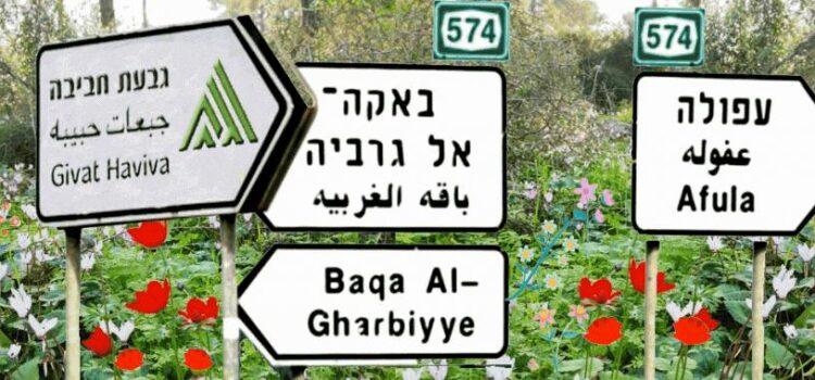 Givat Haviva newsletter February 2021